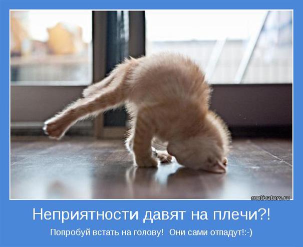 http://stimulas.ru/wp-content/uploads/2011/12/motivator1.jpg