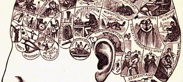 Алгоритм работы человеческого ума
