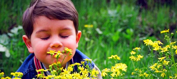 Запахи - источник вдохновения