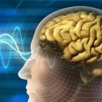 Что такое психическая деятельность?