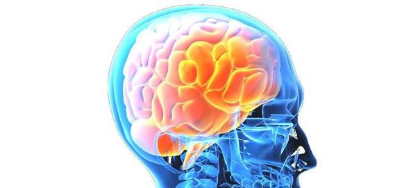 Как эффективно зарядить свой мозг