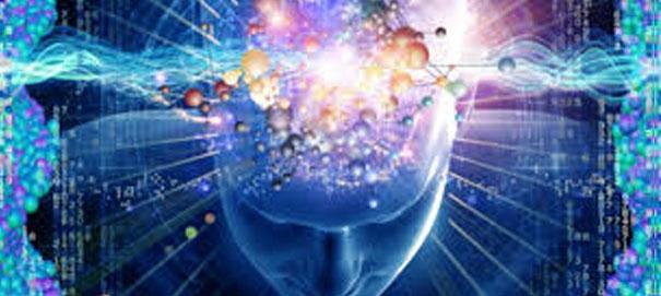 Чувства или разум: что ведет нас по жизни?
