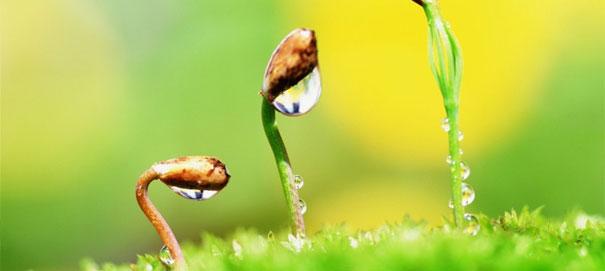 Имейте смелость начать новую жизнь