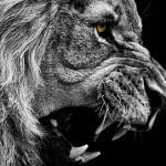 Огнетушитель для злобы: как перестать злиться?