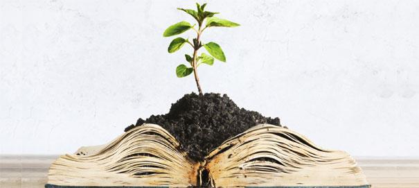 Как развить интеллектуальные способности