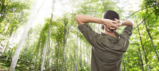 Как успокоить нервы и перестать беспокоиться о будущем